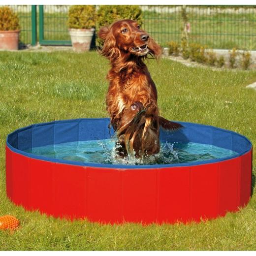 XL Doggy Hunde POOL Hundepool 120 cm
