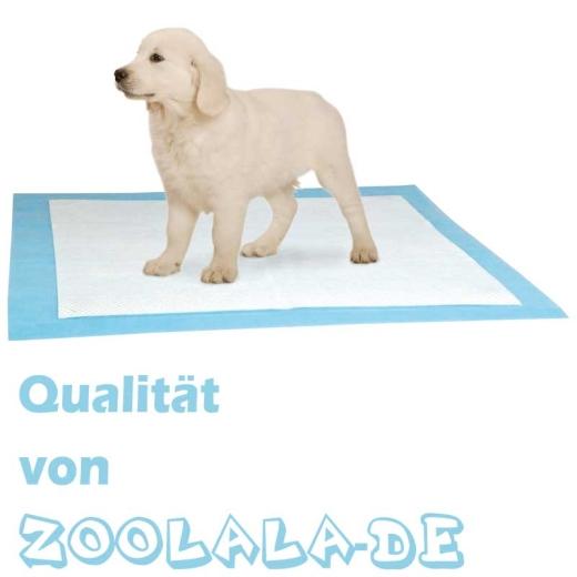 10 x  XL Pads für Puppy Potty Welpen WC XL
