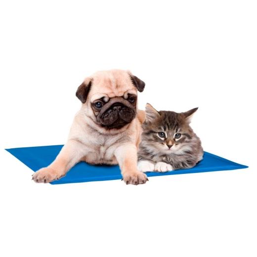 Kühlmatte Fresk für Hunde und Katzen Gr. XS 35x20cm