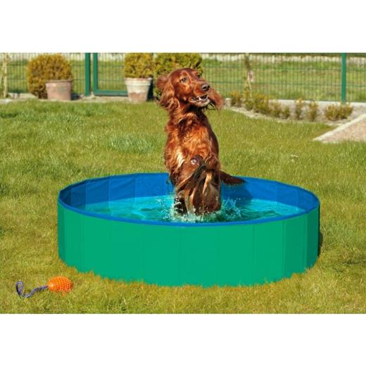 XXL Doggy Pool 160 grün/blau