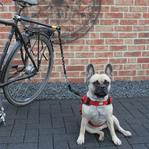 Fotomodell Führhalter Biker Set Abstandhalter