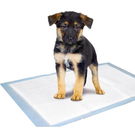 100 x Pads für Puppy Potty Welpen WC -k-