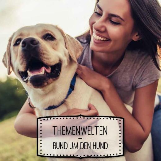 Ratgeber für den Hundefreund 2018