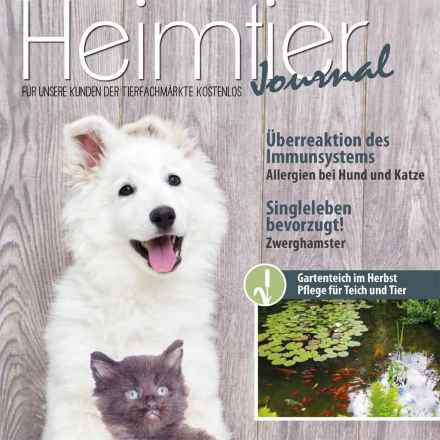 Heimtier-Journal 123