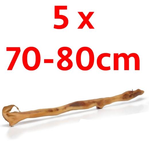 5 x Rinderkopfhaut 70-80cm