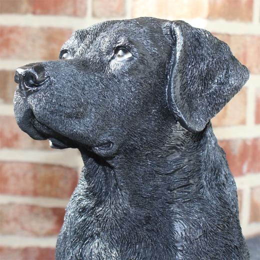 Labrador schwarz Deko