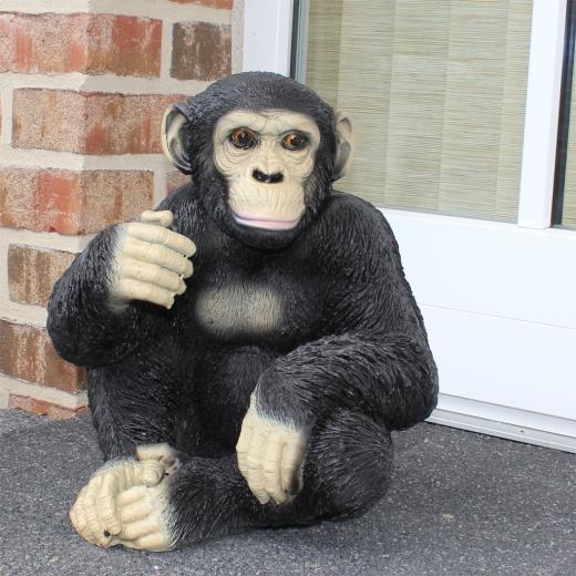 L Schimpanse sitzend