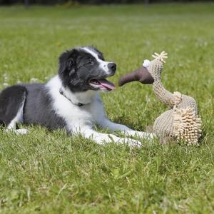 Hundespielzeug Geier Gustav