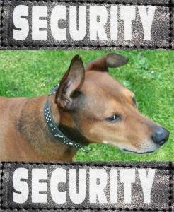 Security Klettsticker für XTREME Geschirre