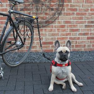 Führhalter Biker Set Abstandhalter + 2. Halter