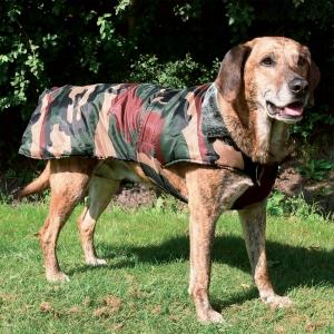 Hundemantel Tcoat Cayenne
